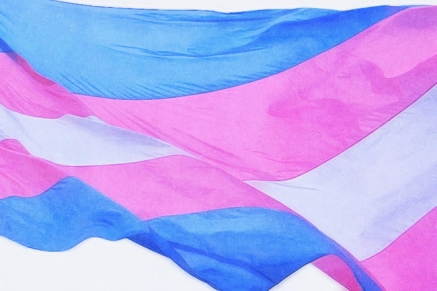 xtransgender-flag.jpg.pagespeed.ic.-DByHqBiJE